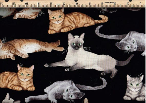 Relaxing Cats on Black Timeless Treasures 100/% cotton fabric by the yard