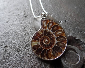 Ammonite Fossil Necklace // Palaeontology Jewellery // Scientist Gift