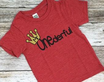 Mr. ONEderful. Birthday Shirt. First birthday shirt. 1st birthday shirt. One. 1st. First birthday.