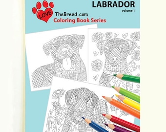 Labrador Dog Coloring Book for Adults by Love The Breed Volume 1
