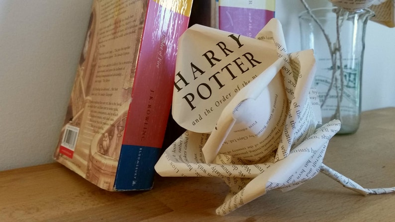 Harry Potter Rose