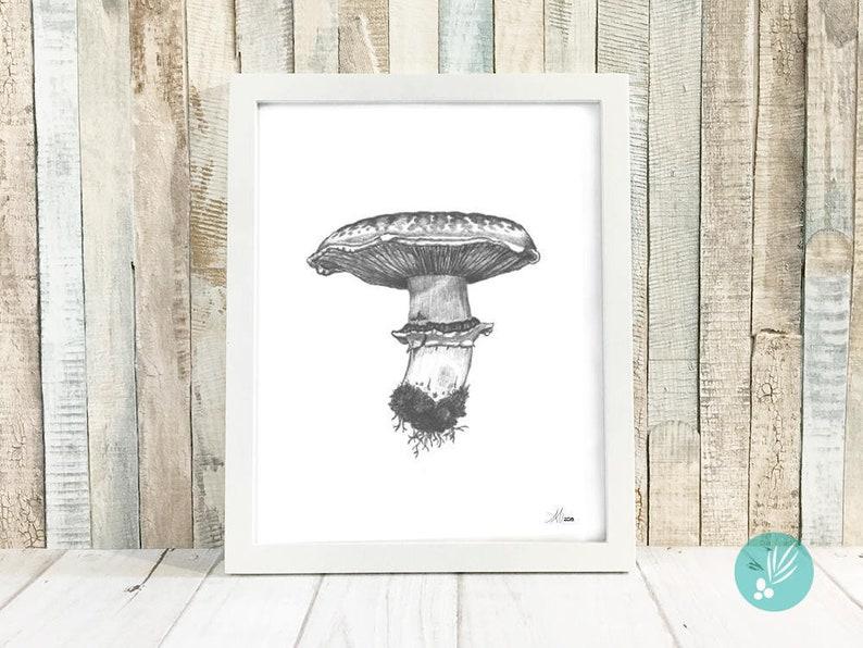 Mushroom Decor Kitchen Art Print Country Home Decor image 0