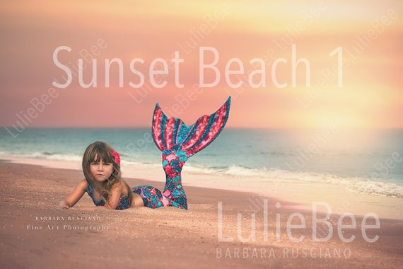 Sunset Beach Silhouette Digital Backdrop High School Senior Digital Backdrops for Photoshop Sunset Beach with Birds Digital Background