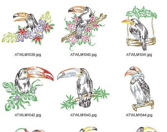 Tropical-Toucans. ( 10 Machine Embroidery Designs from ATW )