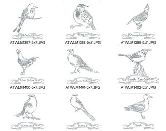 Redwork-State-birds-5   5X7. ( 10 Machine Embroidery Designs from ATW )