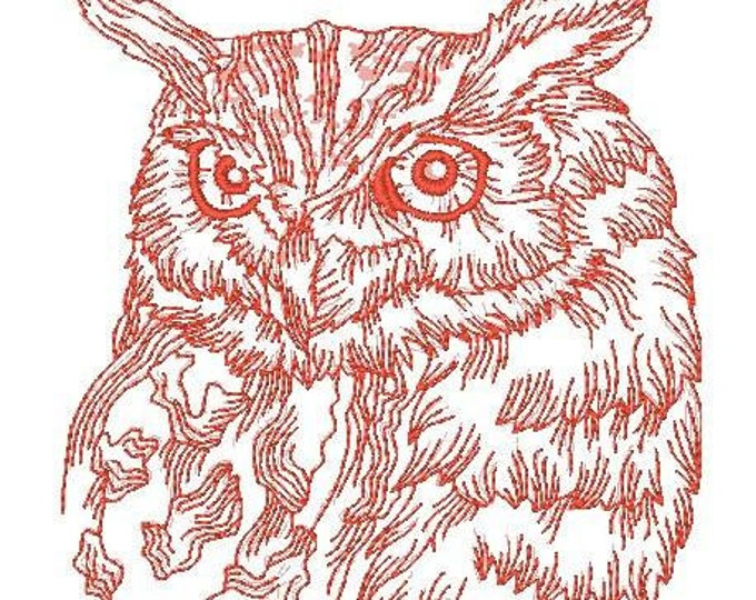 Rework Realistic Owls for 5x7 hoop ( 12 Machine Embroidery Designs from ATW )