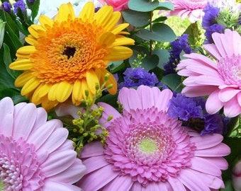 Original photograph semi-rigid plastic flowers 2 ref F10 placemat