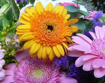 Original photograph semi-rigid plastic flowers 4 ref F12 placemat