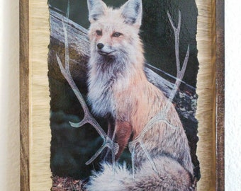 VIXEN And STAG Live Here!  All Wood Framed Picture