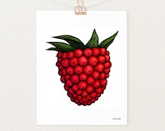 Salmonberry Wall Decor   Illustrated Kitchen, Living Room, Dining Room Art Print   Berry Print By Alaska Native Artist Nick Alan Foote