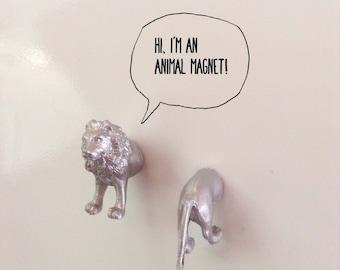 2 lyon silver magnets