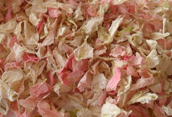 Biodegradable Tissue Paper Wedding Confetti 1 Litre Pink