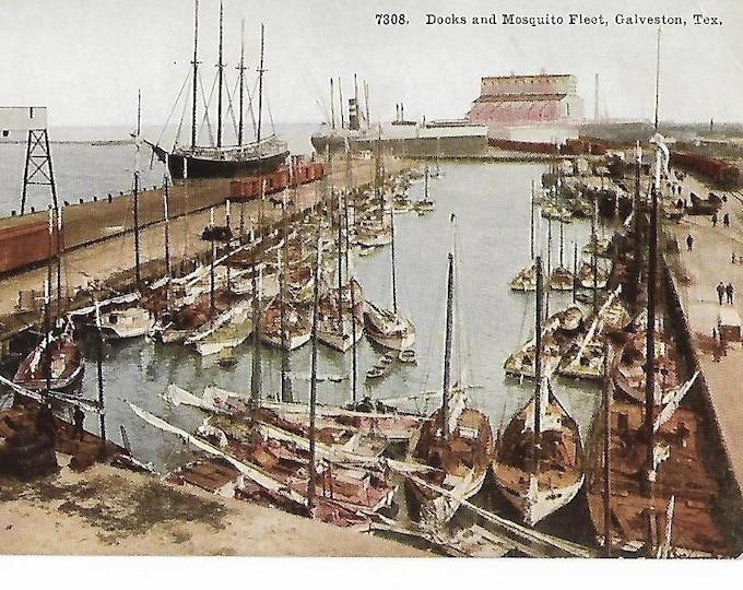 Docks and Mosquito Fleet Galveston Texas Pre-1918 Postcard Unposted