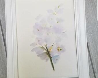 Watercolor print,  9x12in watercolor painting,  print