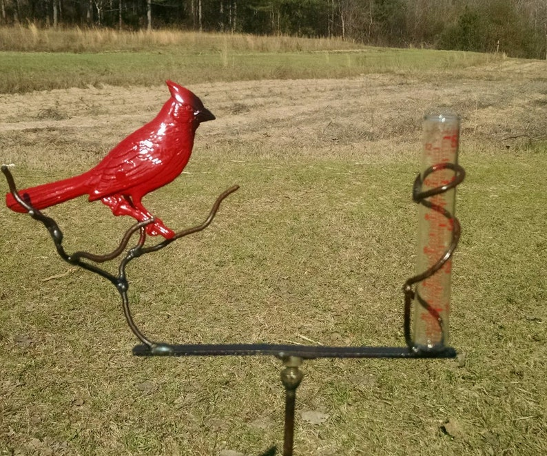 Red Bird resting on a tree branch by BottleTreeBob.com   image 0