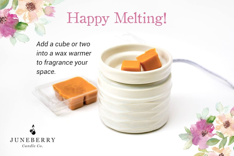 Flameless Candle Tea Party Soy Wax Melts Fruity Scent Spring Relaxing Scent Berry Wax Melts Food Scent Tea Wax Melts Soy Wax Melts