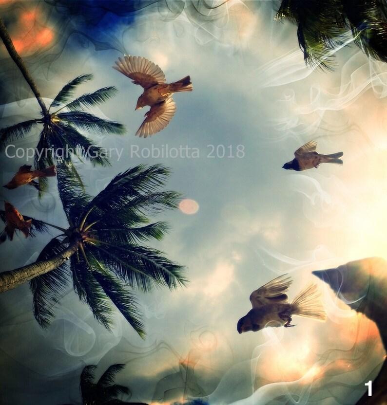 Nature Photo-Art Canvas Prints. Maui Montserrat Tropical 1
