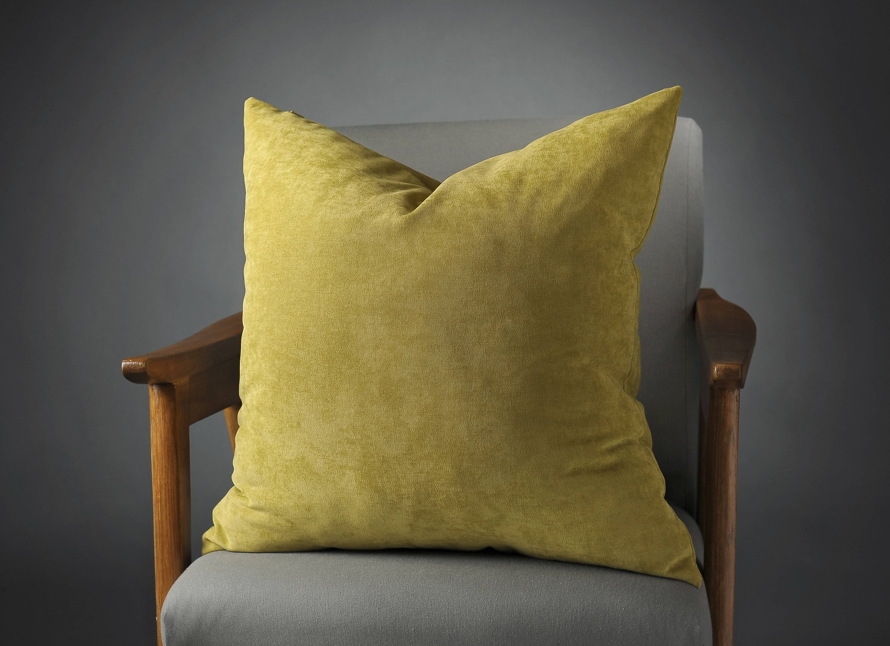 Pistachio Pillow 20x20 Pistachio Pillow