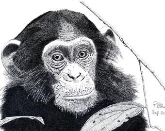 Art Print - Pen & Ink Drawing, A4 - Cheeky Monkey