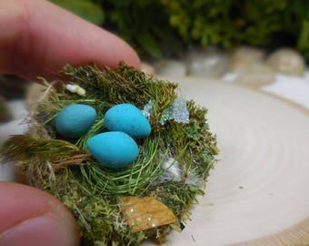Fairy Accessory Robins Nest ~ Miniature Nest with Tiny Turquoise Birds Eggs ~ Little Moss Nest Fairy Garden Accessory ~ Animals for Fairies