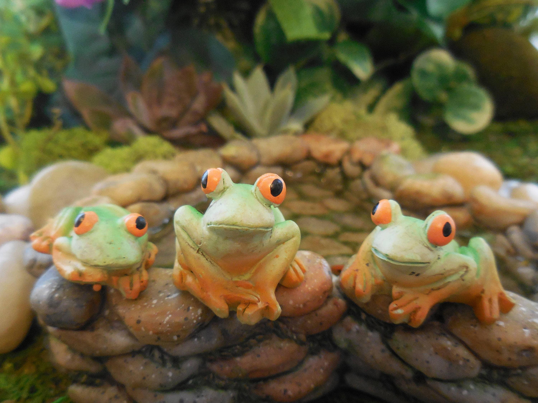 Miniature Tropical Frogs Set of 3 Fairy Garden Frogs