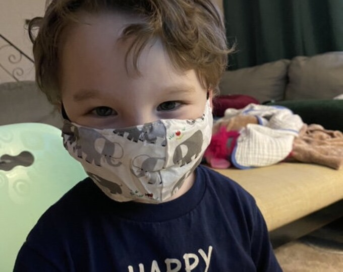 Kids age 3-6 mask with filter pocket and nose wire