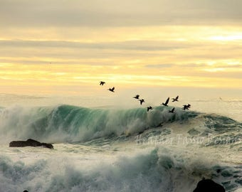 Beautiful winter waves at sunset with pelicans flying through in Monterey California printed on Metal