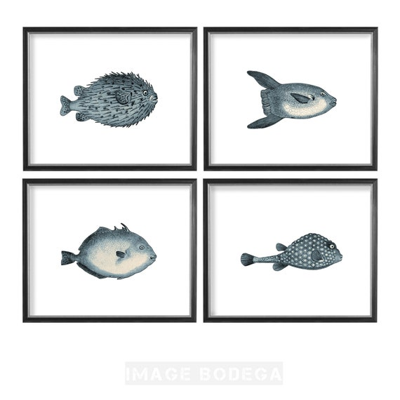 etc Fish Digital Downloadable Art for Greeting Cards Journal Covers No Shipping Fees. Greeting Cards Mugs
