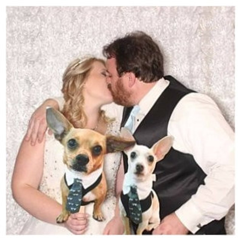 Pet Photo Prop Funny Big Head Photo Prop Cat Dog Picture on a Stick Photobooth Cat Dog Custom Photo Booth Prop Wedding Pet
