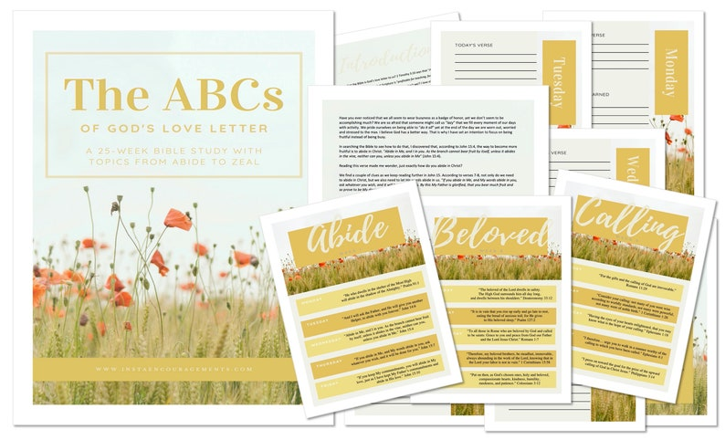 The ABCs of God's Love Letter Bible Study eBook PDF image 0