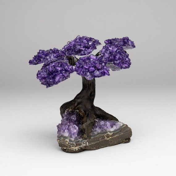 Astro Gallery of Gems The Love Tree Medium Rose Quartz Clustered Gemstone Tree on Amethyst Matrix