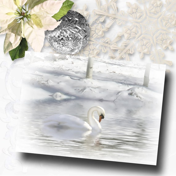 Wildlife Christmas Cards.Beautiful Swan And Snow Season S Greetings Holiday Cards Seasons Greetings Pretty Wildlife Christmas Cards Beautiful Christmas Cards