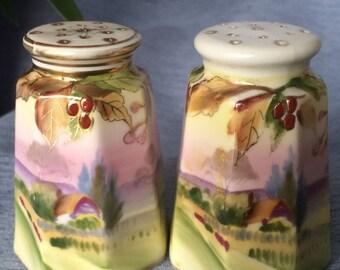 Hand Painted NIPPON Salt & Pepper Shakers, Unique Gift Idea, Set of Porcelain Shakers, Vintage Tableware, PL3504