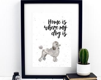 Home Is Where My Dog Is Cockerpoo Print