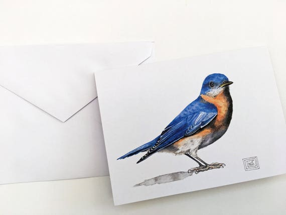 Bluebird printed watercolor cards set of 8 cards and etsy image 0 m4hsunfo