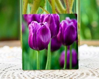 Purple Tulips on ceramic tile/coaster