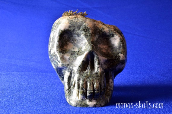 Skull with original growing Moss on top!