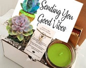 Sending You Good Vibes - Succulent gift box - FREE SHIPPING -cactus gift - Send A Gift - birthday present- friend gift get well soon
