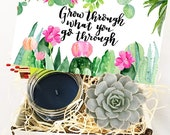 Succulent Gift Box - Grow Through What You Go Through - Succulent Gifts - Gifts that Grow - Succulent Care Package - Break Up Gift - Friend