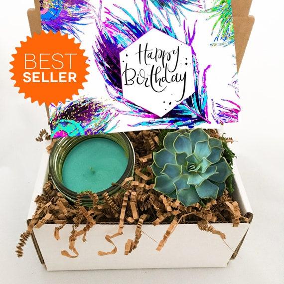 Happy Birthday Gift Box Succulent Friend