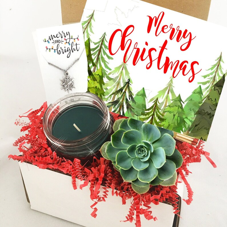 Christmas Succulent Gift.Succulent Gift Box Christmas Set Merry Xmas Box Succulent Care Package Send A Gift Happy Holidays Long Distance Gift