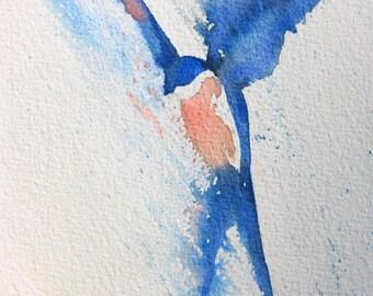 Blue Swallow Bird3