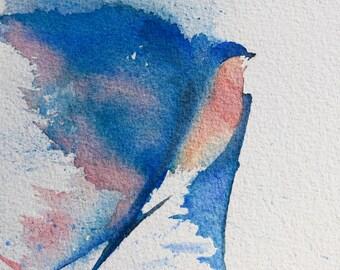 Blue Swallow Bird2