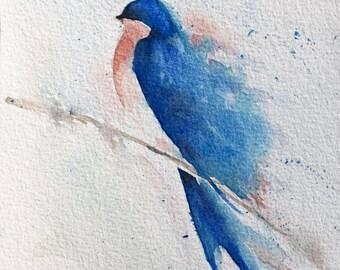 Blue Swallow Bird1