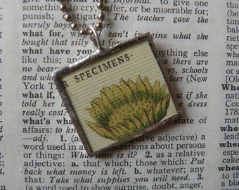 Sunflower seedpod specimen, vintage botanical illustrations,  hand-soldered glass pendant, choice of necklace, bookmark, keychain, bag charm