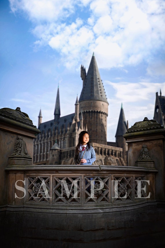 Hogwarts Digital Backdrop Etsy