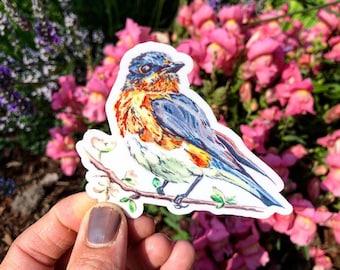 Vinyl blue bird decal, pnw car decal, die-cut, wildlife, watercolor art, Pacific Northwest Art