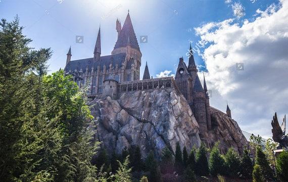 Extra Large Hogwarts Castle Kids Vinyl Glue Wallpaper Etsy