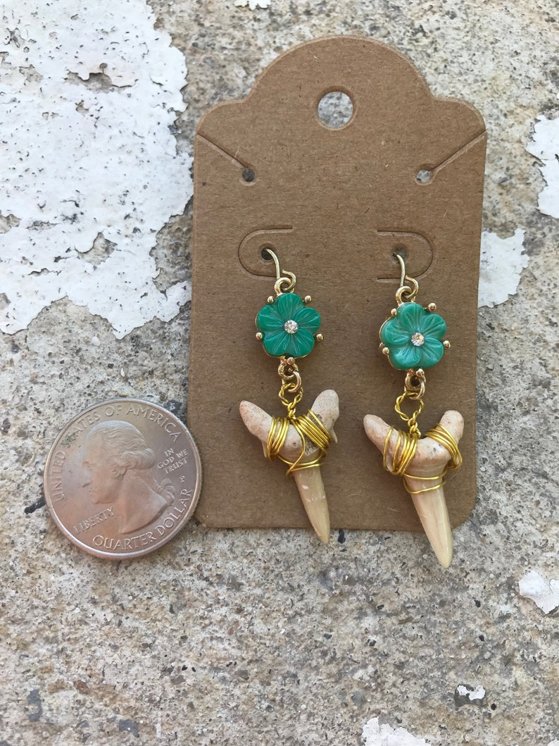 Wrapped fossilized shark teeth and flower shell earrings in gold tone