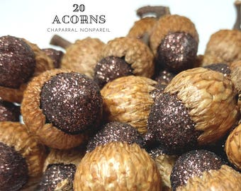 Glittered Acorns, Natural Table Scatter, Fall Wedding Decoration, Thanksgiving Party Decor, Rustic Christmas, Woodland Wonderland, DIY Decor